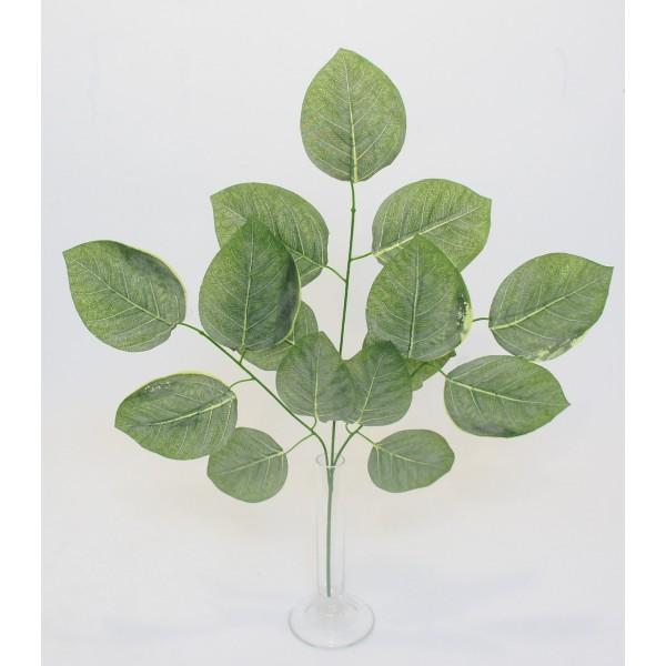 Vejica listje